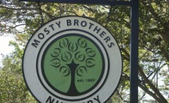 Mosty Sign